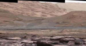 A professor at the University of Ohio claims that the Martian landscape might be littered with insect and reptile-like life-forms. However, other scientists refute this claim. (Image: © NASA/JPL-Caltech)